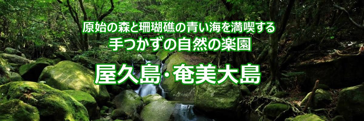 屋久島・奄美大島の旅